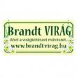 Brandt Virág - Szépkilátás út
