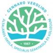 Gennaro Verolino Általános Iskola, Készségfejlesztő Speciális Szakiskola és Kollégium