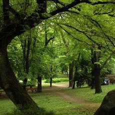 FCSM nyilvános WC - a Városmajor park közepén (Forrás: wikipedia.org)