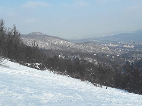 Fotó: Normafa park