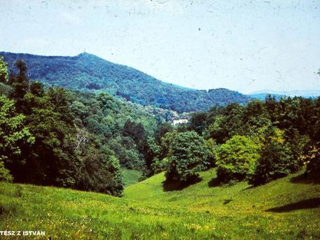 A Harang-völgy 1985-ben (Kertész Z István felvétele)