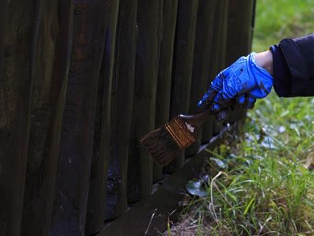 Festik a Csacsi-réten az esőbeállót (fotó: Nagy-Benczey Viktor)