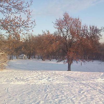 Kép: normafa park