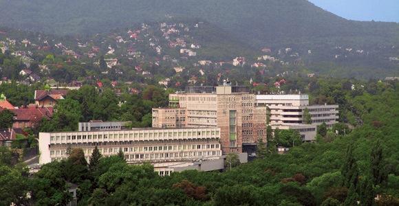 Kép: Semmelweis Egyetem