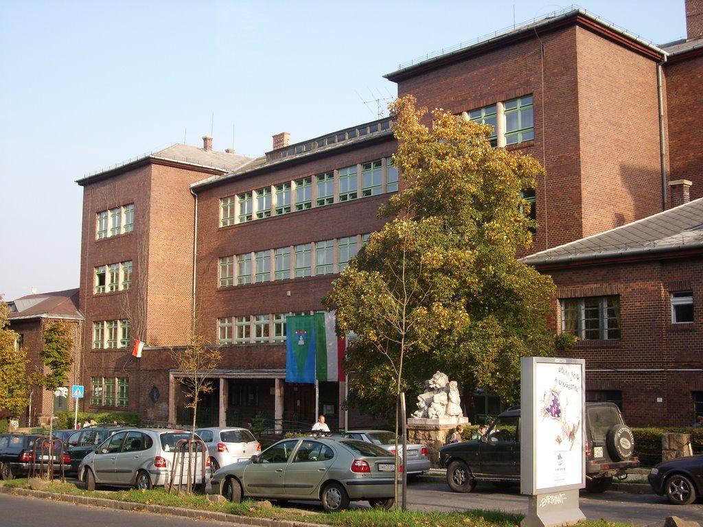 XII. kerület - Hegyvidék | Németvölgyi Általános Iskola